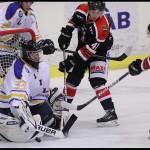 Ljungby-Hockey-10