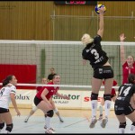 Ljungby-volley-02