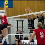 Ljungby-volley-14