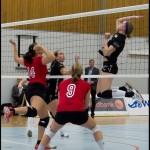 Ljungby-volley-16