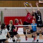 Ljungby-volley-17
