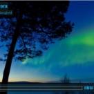 Fantastisk timelapse på norrsken