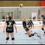 SM_Volleyboll_Ljungby-Katrineholm_06
