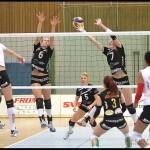 SM_Volleyboll_Ljungby-Katrineholm_09