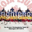 Lagfoto Tre Kronor Hockeyskola