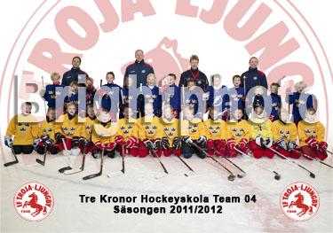 Tre Kronor Hockeyskola - Team 04