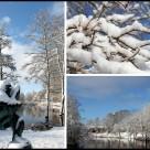 Ljungby i vinterskrud